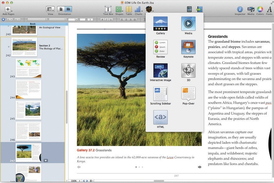 iBooks author or how to improve performance of students