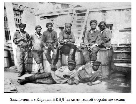Заключенные Карлага НКВД на химической обработке семян