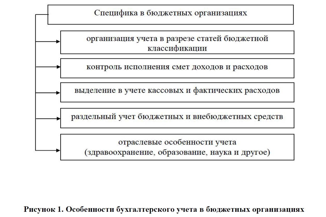 Особенности бухгалтерского учета в бюджетных организациях